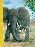 Elephant. Animal Diaries